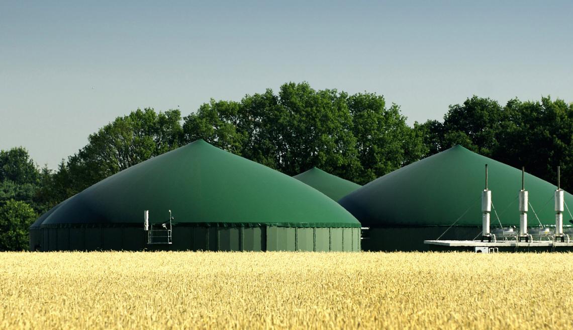 Occorre definire l'impiego delle sanse di oliva per la produzione agroenergetica