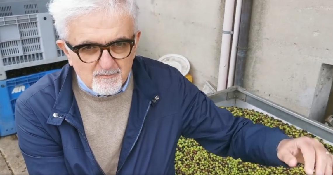 L'olio d'oliva è un compagno della nostra vita, non il prim'attore