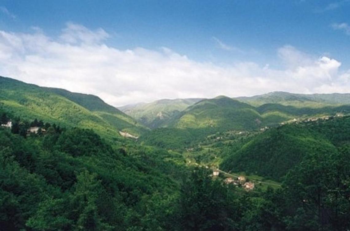 Una camminata tra i sentieri dell'Alta Valtaro per scoprire la natura