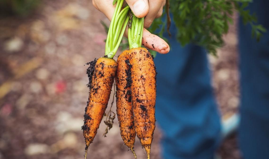 Il successo del cibo biologico è una storia di persone