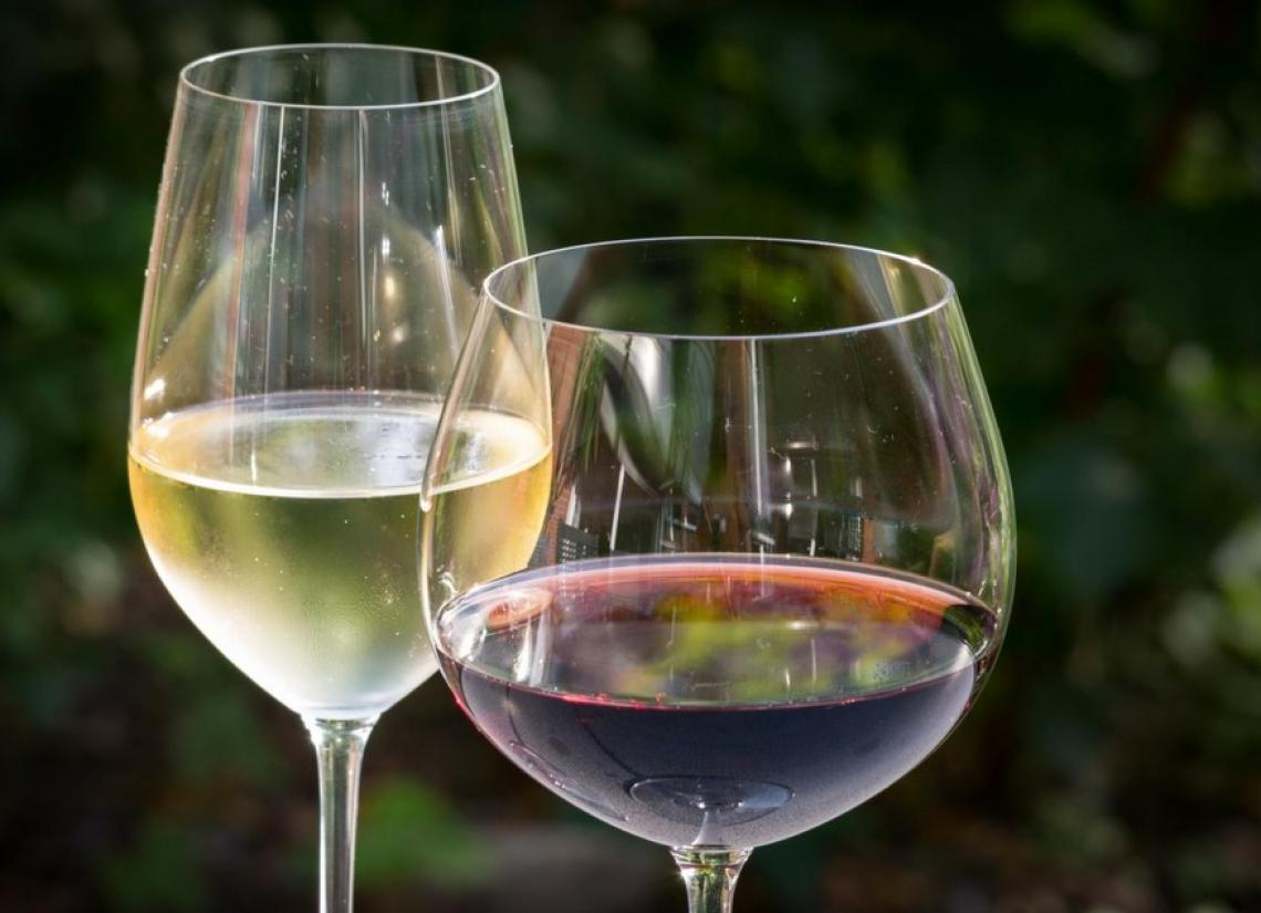 Sace a Vinitaly Special Edition per sostenere l'export del vino italiano