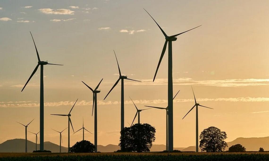 L'investimento in sostenibilità convince le aziende agricole italiane