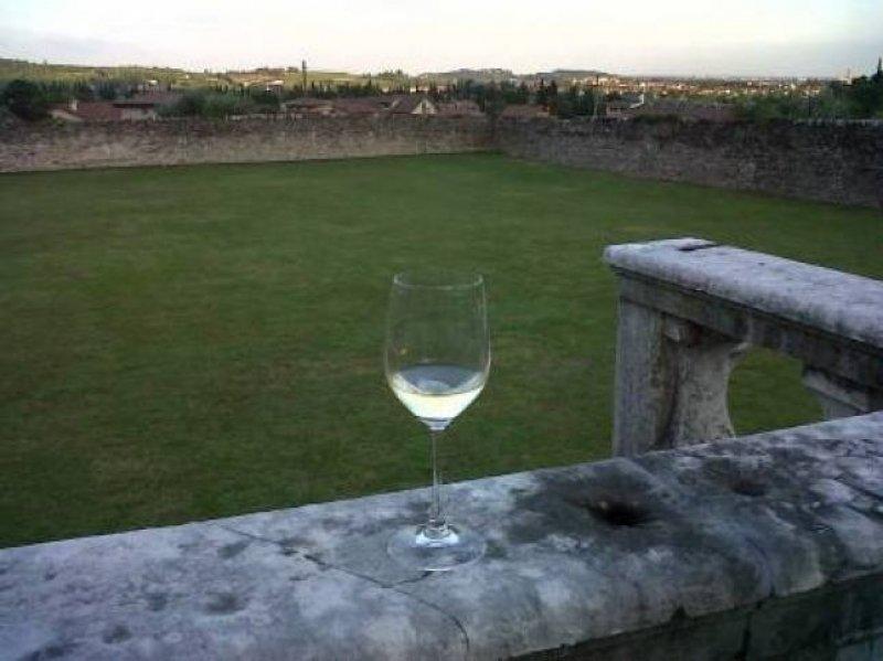 Lo sguardo di un bicchiere di vino sul mondo - foto di Monica Sommacampagna