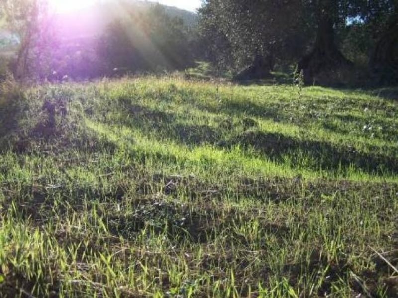 Il Molise secondo Giovanni Aloia - E' bello svegliarsi con un sole accogliente