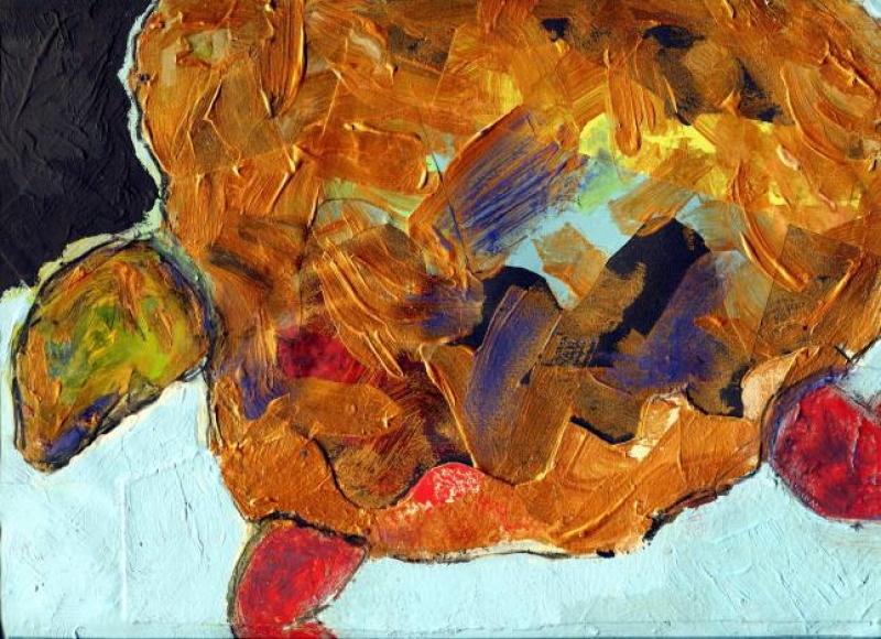 Testuggine dorata, 2011 - illustrazione di Nicola Dal Falco