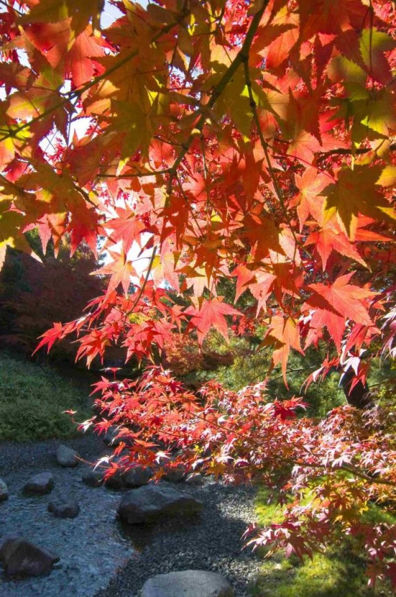 In viaggio verso l'autunno