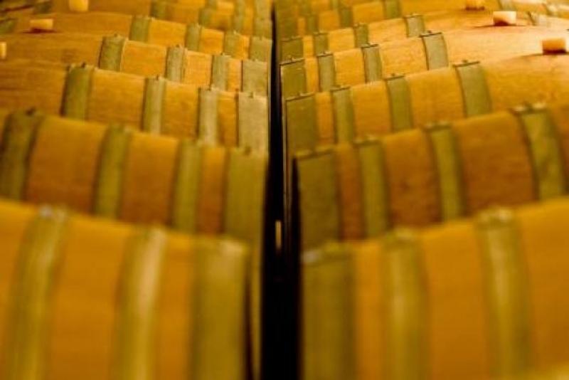 Barrique in cantina. L'Amarone riposa