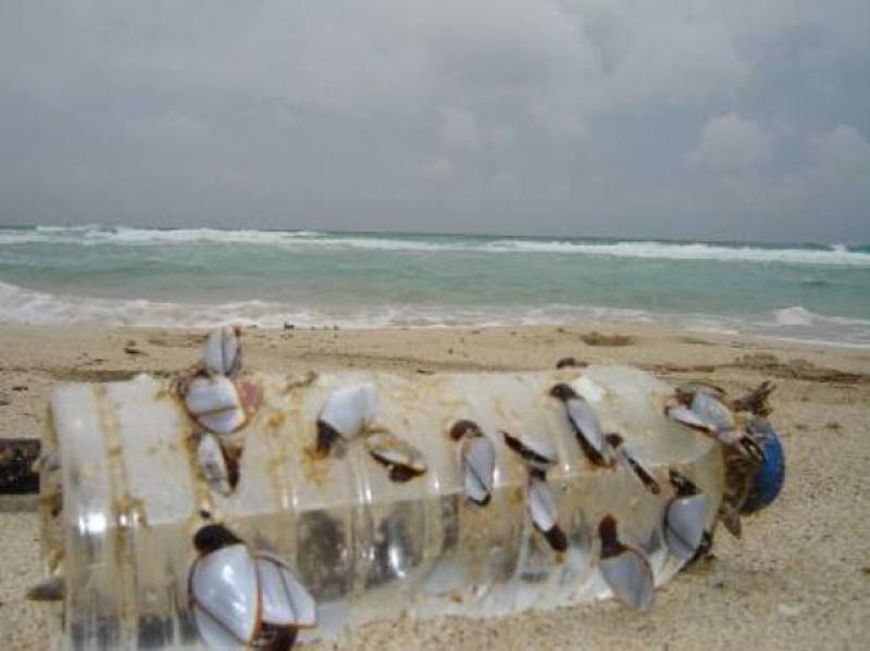Il mare che non vogliamo - Foto di Luigi Caricato